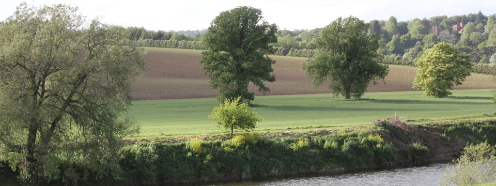 Beautiful Herefordshire, home of Swan Brewery
